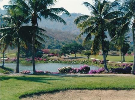 Palm-Hills-450